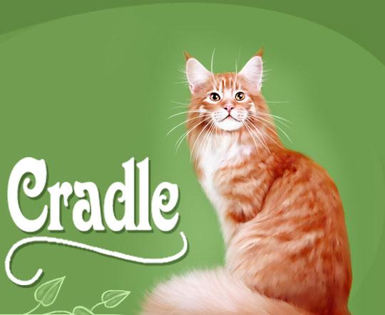 Купить футболки на Рамблере - кошка майкун; Уникальные футболки.